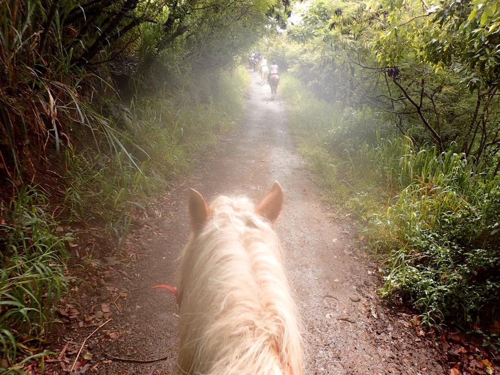 乗馬ツアー