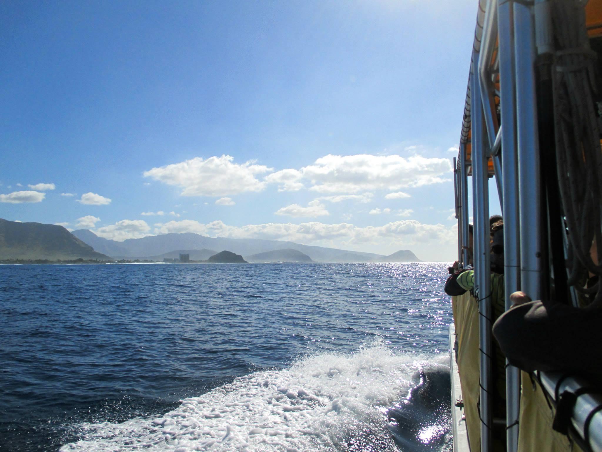 Seahawaii ボート